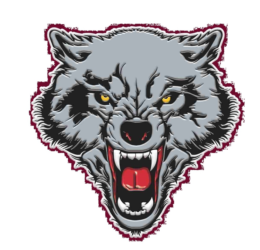 Dilley Wolves Boys Basketball Area Round Playoff Game