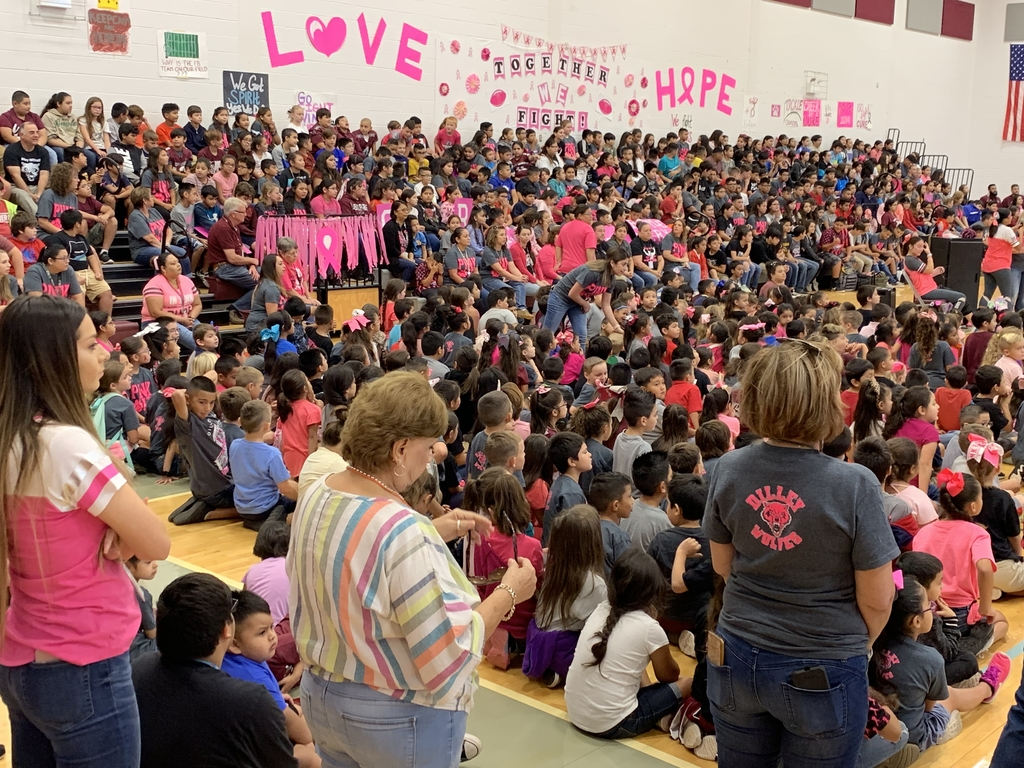 Pink out pep rally DHS